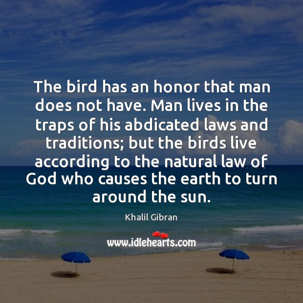 The bird has an honor that man does not have. Man lives Image