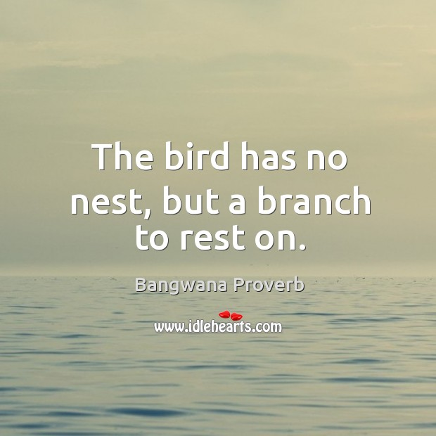 The bird has no nest, but a branch to rest on. Bangwana Proverbs Image