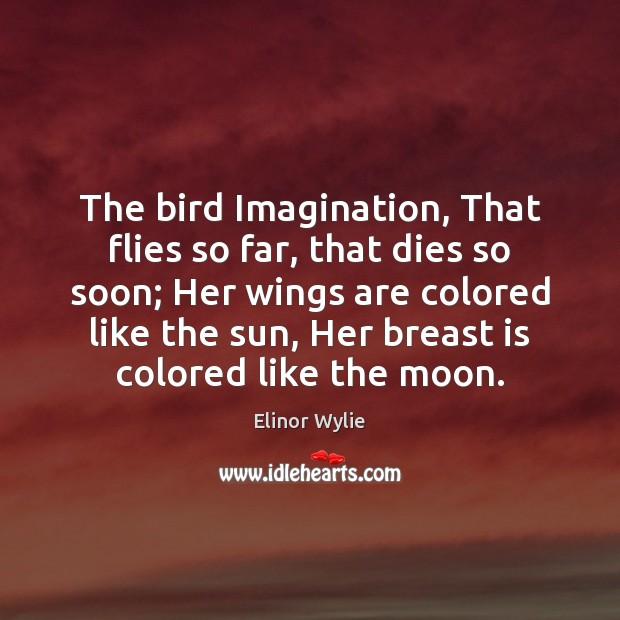 The bird Imagination, That flies so far, that dies so soon; Her Image