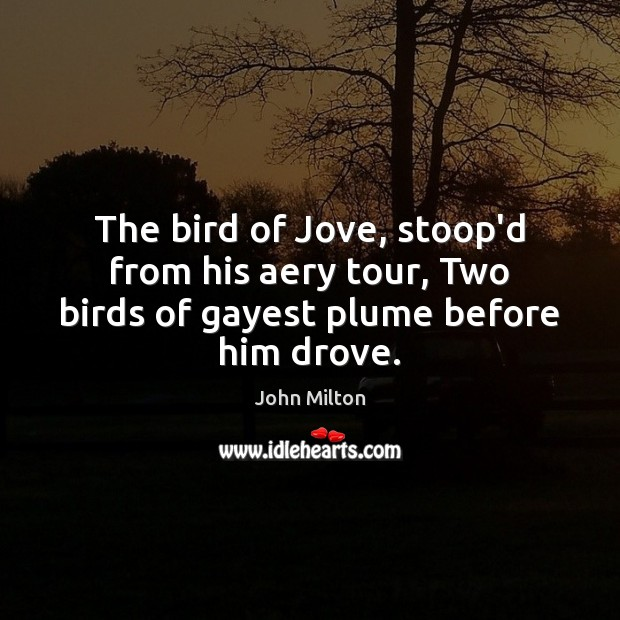 The bird of Jove, stoop'd from his aery tour, Two birds of gayest plume before him drove. Image