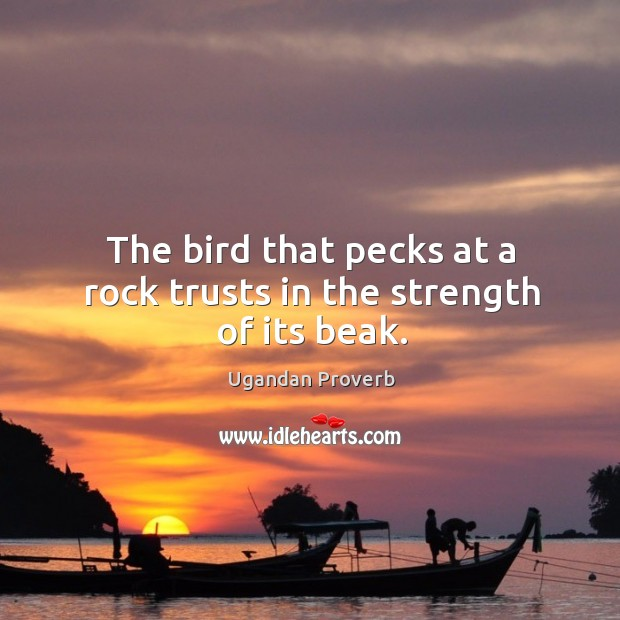 The bird that pecks at a rock trusts in the strength of its beak. Ugandan Proverbs Image
