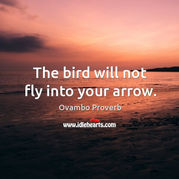 The bird will not fly into your arrow. Ovambo Proverbs Image