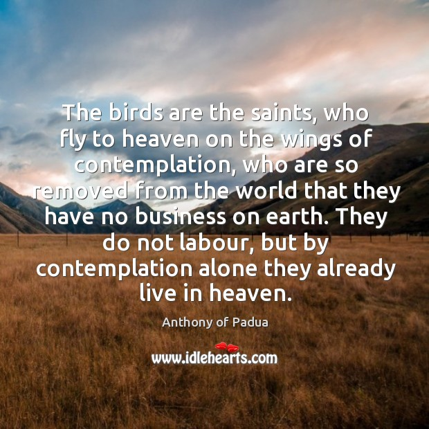 The birds are the saints, who fly to heaven on the wings Image