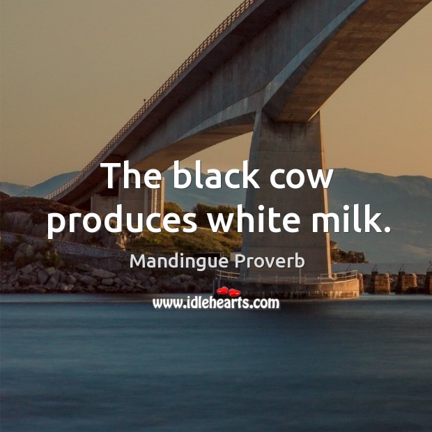 Image, The black cow produces white milk.