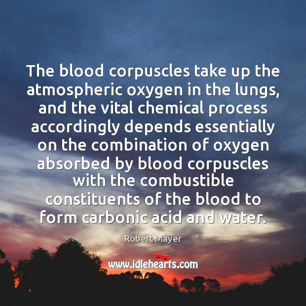 Image, The blood corpuscles take up the atmospheric oxygen in the lungs, and