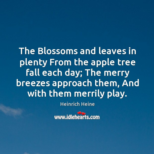 The Blossoms and leaves in plenty From the apple tree fall each Image