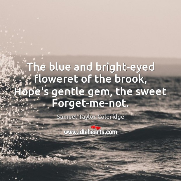 The blue and bright-eyed floweret of the brook, Hope's gentle gem, the Image