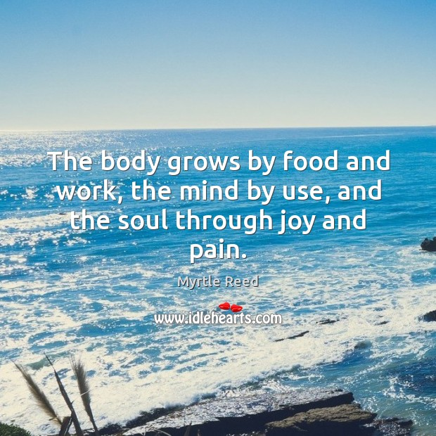 The body grows by food and work, the mind by use, and the soul through joy and pain. Myrtle Reed Picture Quote