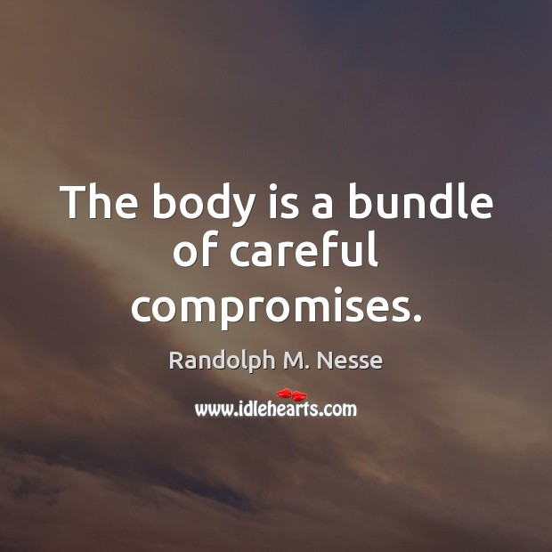 Image, The body is a bundle of careful compromises.