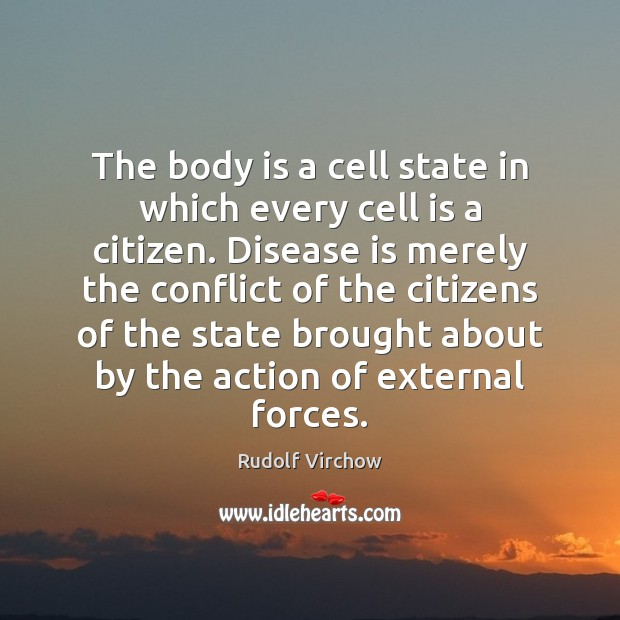 The body is a cell state in which every cell is a Image