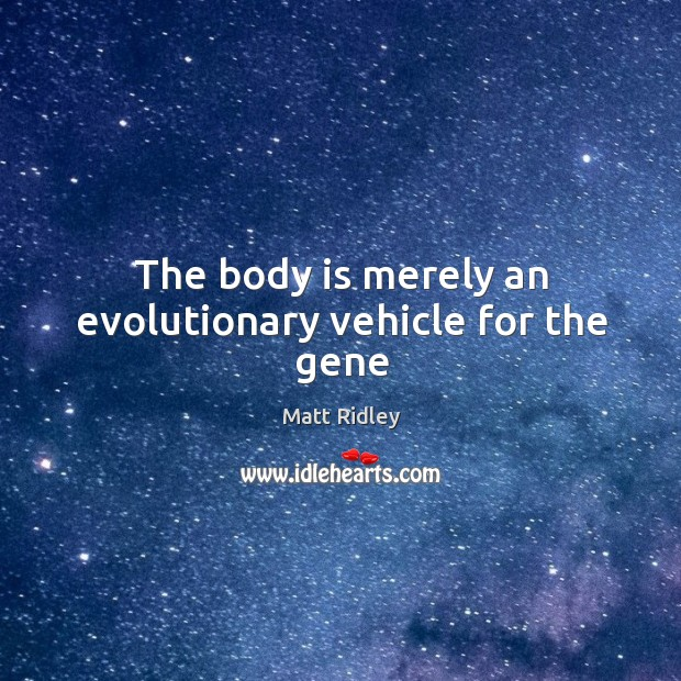 The body is merely an evolutionary vehicle for the gene Image