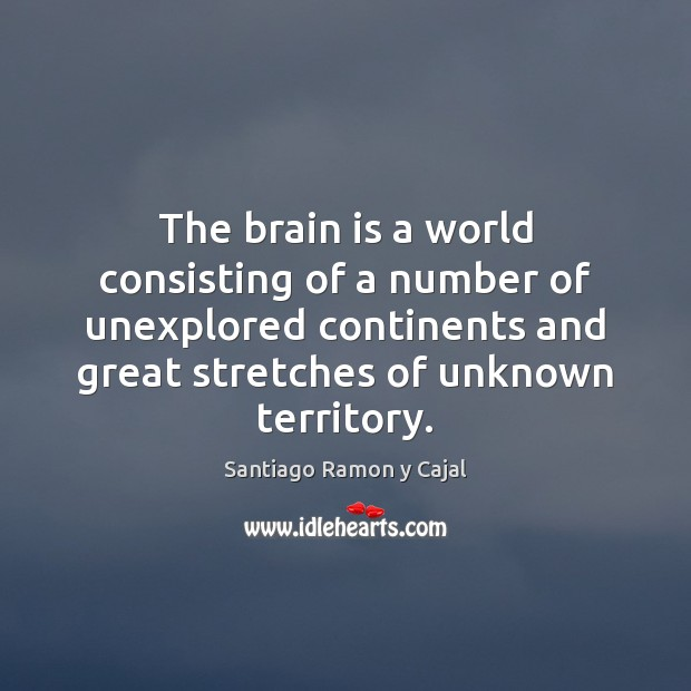The brain is a world consisting of a number of unexplored continents Image