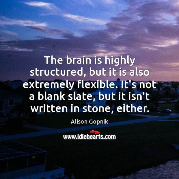 Image, The brain is highly structured, but it is also extremely flexible. It's