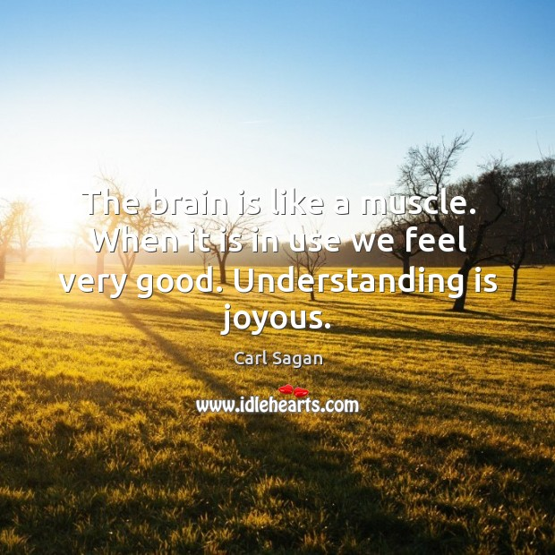 Image, The brain is like a muscle. When it is in use we feel very good. Understanding is joyous.