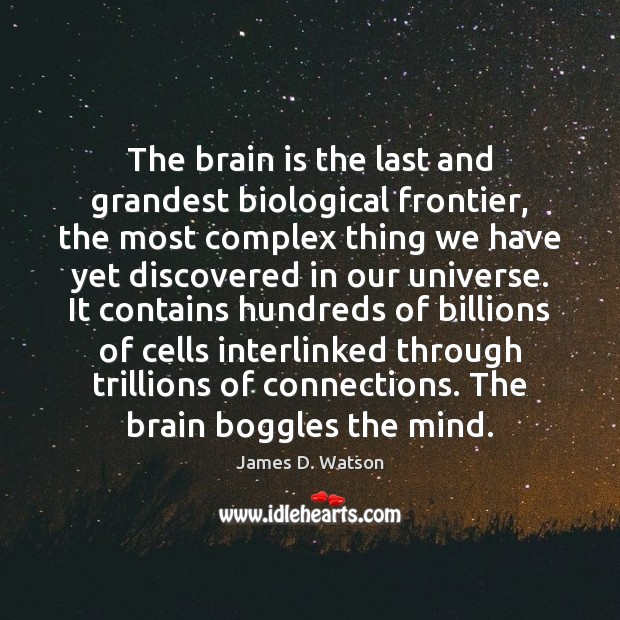 The brain is the last and grandest biological frontier, the most complex James D. Watson Picture Quote