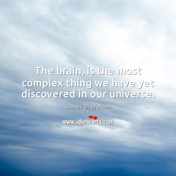 The brain, is the most complex thing we have yet discovered in our universe. James D. Watson Picture Quote