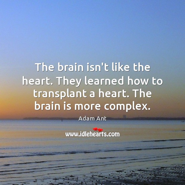 Image, The brain isn't like the heart. They learned how to transplant a