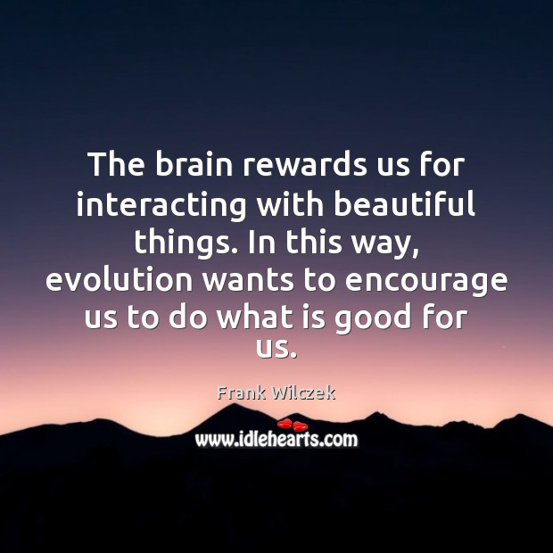 The brain rewards us for interacting with beautiful things. In this way, Frank Wilczek Picture Quote