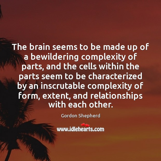 The brain seems to be made up of a bewildering complexity of Image