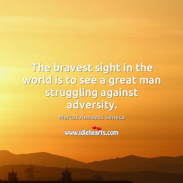 The bravest sight in the world is to see a great man struggling against adversity. Image