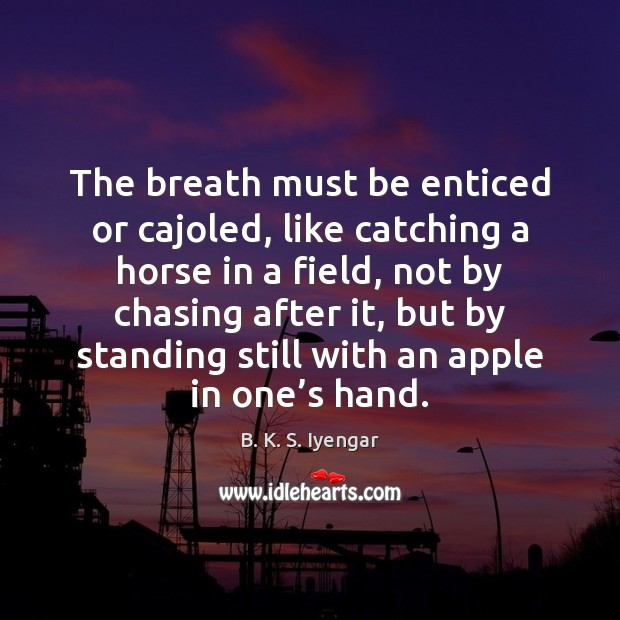 The breath must be enticed or cajoled, like catching a horse in B. K. S. Iyengar Picture Quote