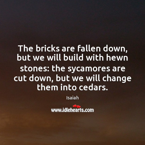 The bricks are fallen down, but we will build with hewn stones: Image