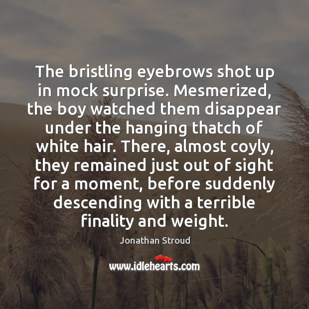 The bristling eyebrows shot up in mock surprise. Mesmerized, the boy watched Image