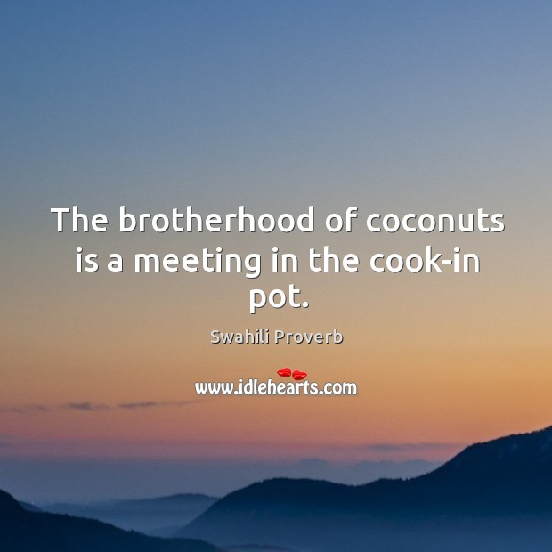 Image, The brotherhood of coconuts is a meeting in the cook-in pot.