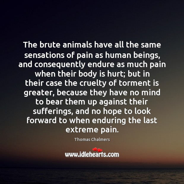 Image, The brute animals have all the same sensations of pain as human