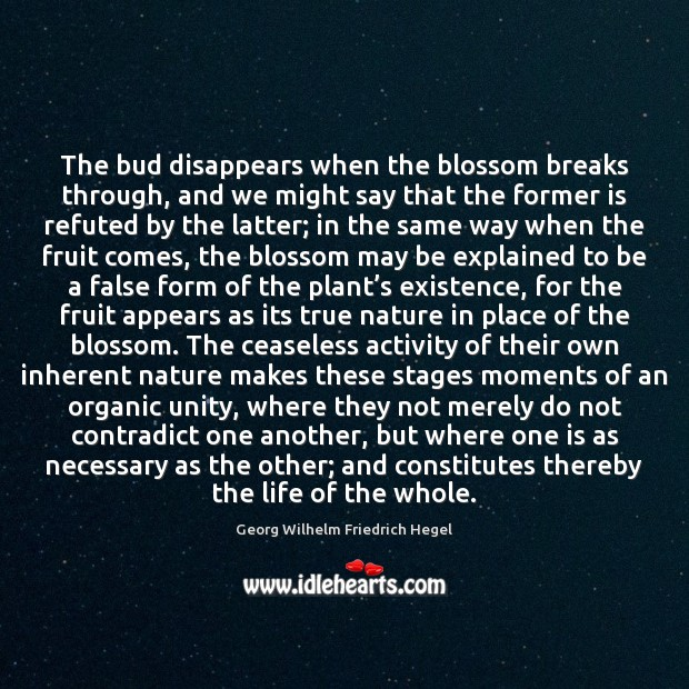 The bud disappears when the blossom breaks through, and we might say Image