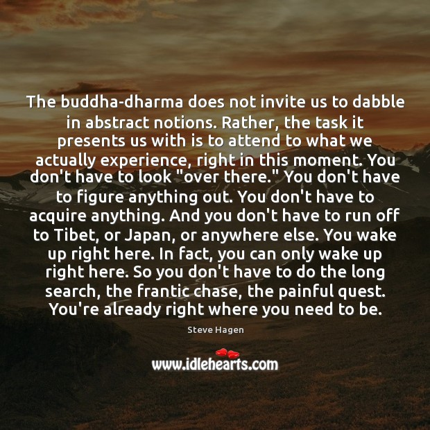 The buddha-dharma does not invite us to dabble in abstract notions. Rather, Steve Hagen Picture Quote