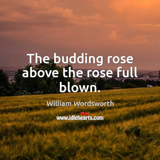 The budding rose above the rose full blown. William Wordsworth Picture Quote