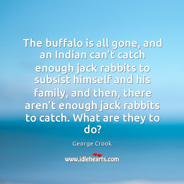 The buffalo is all gone, and an indian can't catch enough jack rabbits to subsist himself and his family Image