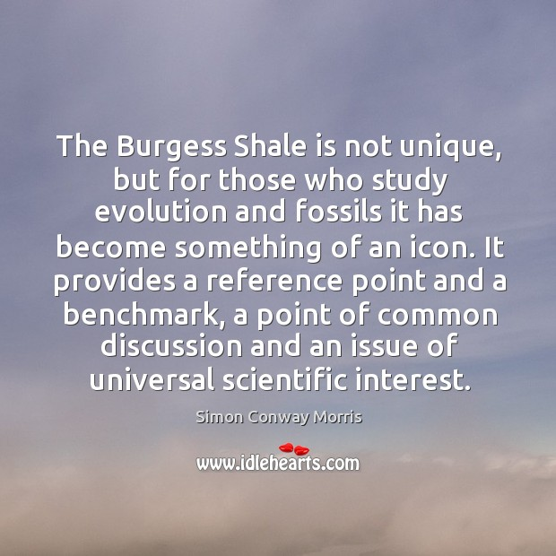 Image, The burgess shale is not unique, but for those who study evolution and fossils it has become something of an icon.
