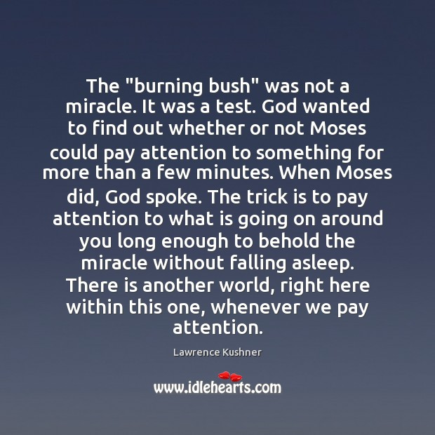 "The ""burning bush"" was not a miracle. It was a test. God Image"