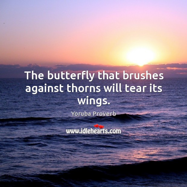 The butterfly that brushes against thorns will tear its wings. Yoruba Proverbs Image
