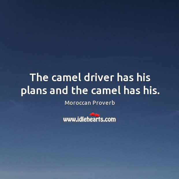 The camel driver has his plans and the camel has his. Moroccan Proverbs Image