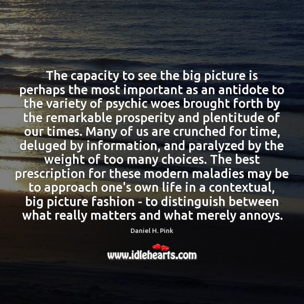 The capacity to see the big picture is perhaps the most important Image