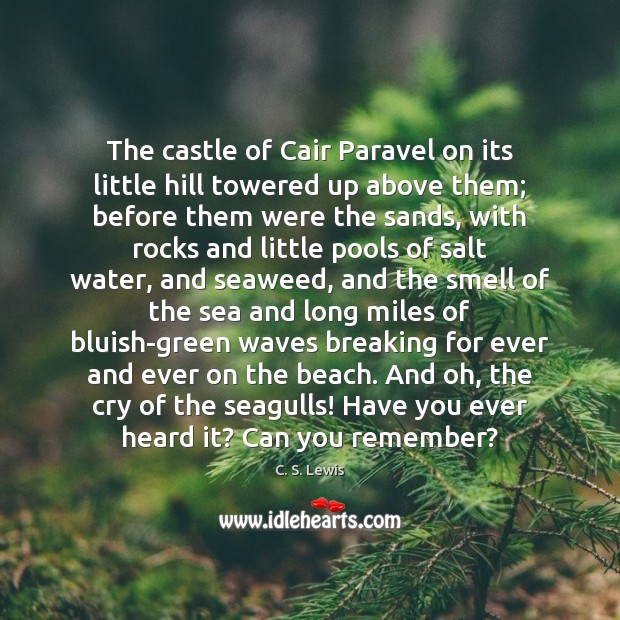 The castle of Cair Paravel on its little hill towered up above Image