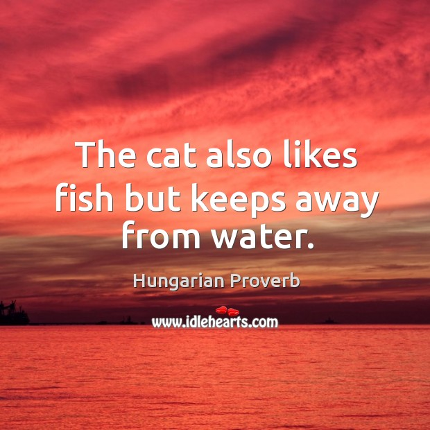 The cat also likes fish but keeps away from water. Hungarian Proverbs Image