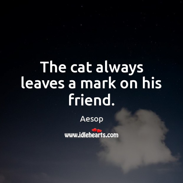 Image, The cat always leaves a mark on his friend.