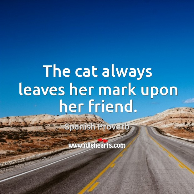Image, The cat always leaves her mark upon her friend.