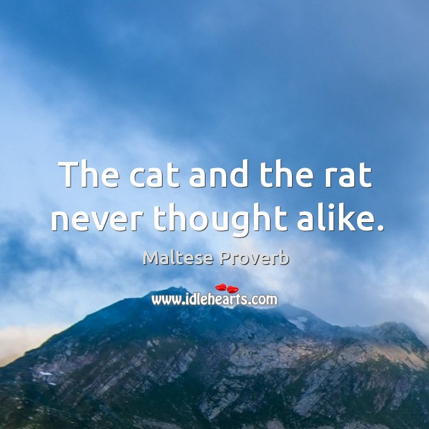 The cat and the rat never thought alike. Maltese Proverbs Image