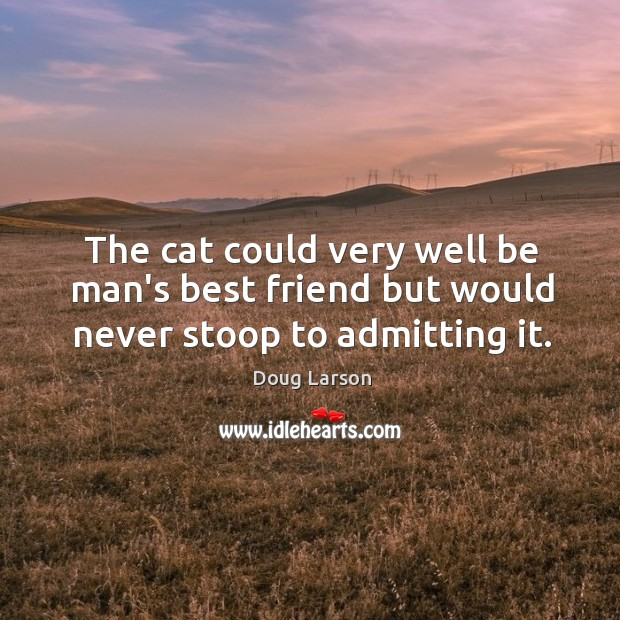 Image, The cat could very well be man's best friend but would never stoop to admitting it.