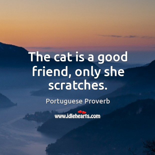 The cat is a good friend, only she scratches. Image