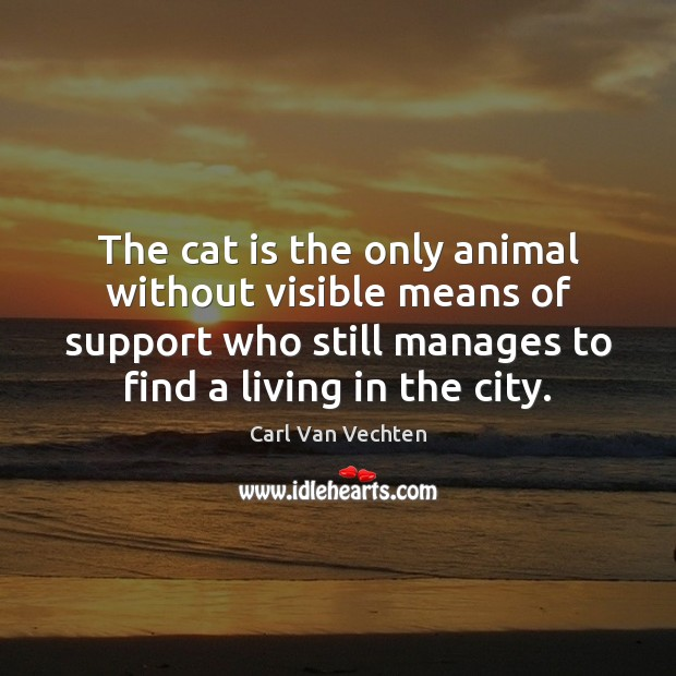 Carl Van Vechten Picture Quote image saying: The cat is the only animal without visible means of support who