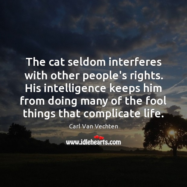 Carl Van Vechten Picture Quote image saying: The cat seldom interferes with other people's rights. His intelligence keeps him