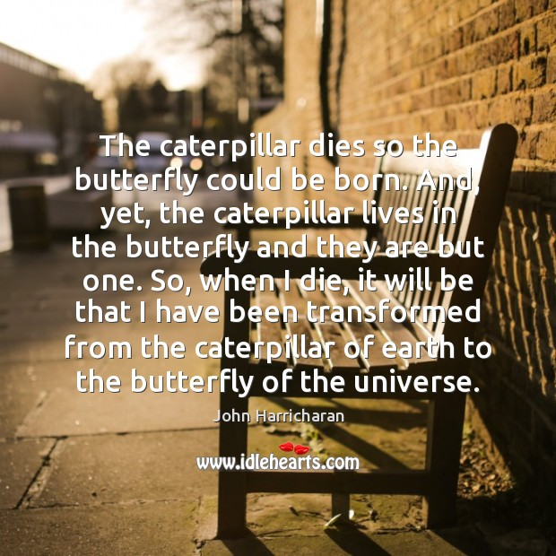 Image, The caterpillar dies so the butterfly could be born. And, yet, the