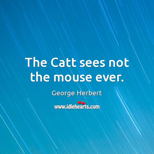 The Catt sees not the mouse ever. Image