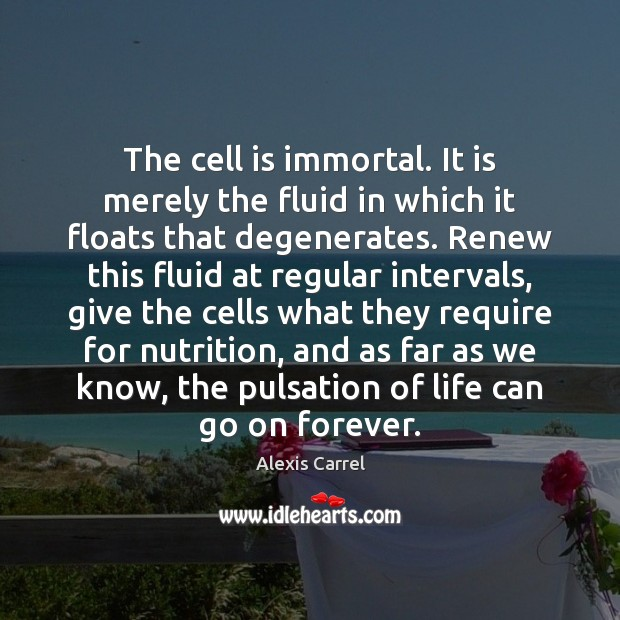 Image, The cell is immortal. It is merely the fluid in which it